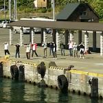 礼文島の港での見送り